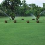 Skytop Golf Village Garden View