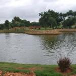 Skytop Golf Village Pond View