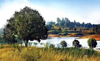 Best Top 10 Plots Mysore